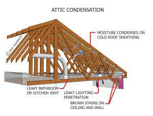 Richmond Home Inspector Should You Install An Attic Fan